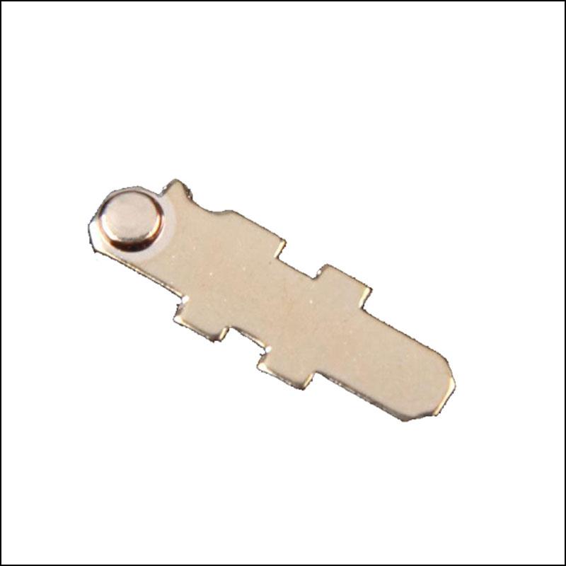 Beryllium Copper Stamping (23)
