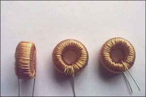Canted Coil Spring (2)