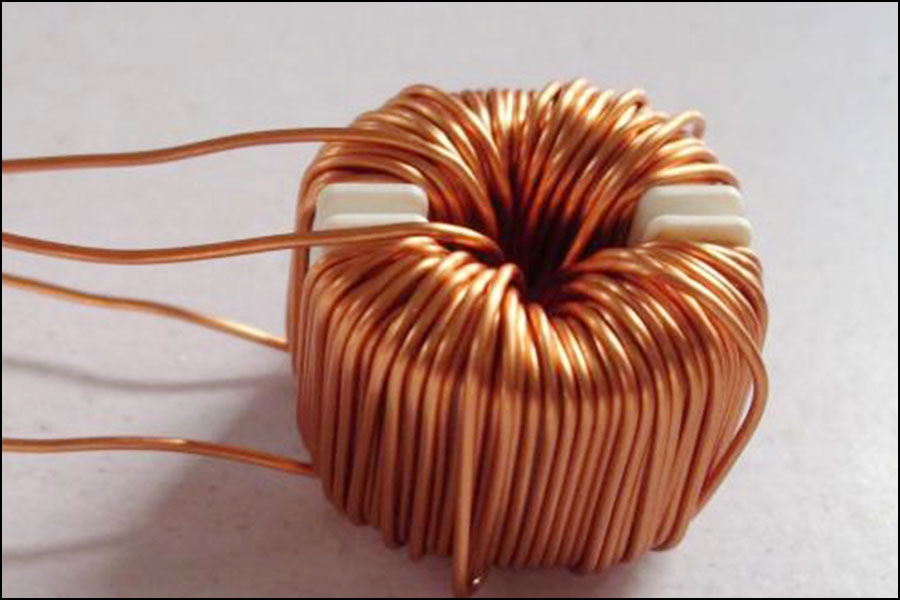 Canted Coil Spring (3)